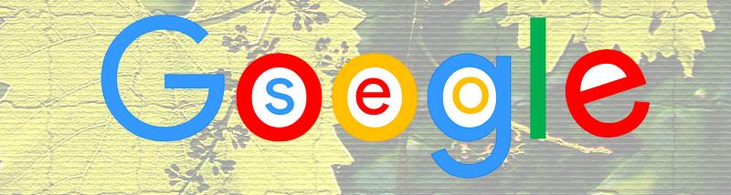 seo-pisanje-tekstov za google