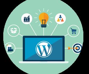 5 zadev, ki jih je potrebno vedeti, če si lastnik WordPress spletne strani